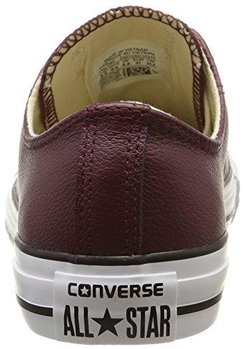 Converse - Ctas Sea Lea Ox, Sneakers da donna Rosso (Bordeaux)