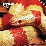 Snakes 2013 - Schlangen - Original BrownTrout-Kalender