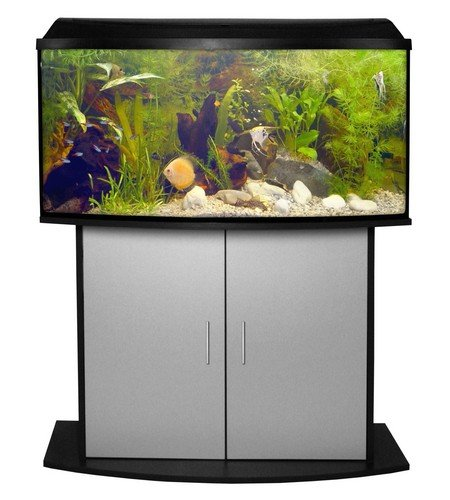 Pacific Set Aquarium mit Filter