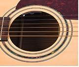 Shadow Electronics SH-MS-NFX-AV - Pastilla para guitarra acústica para guitarra acústica