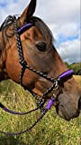 rope bridle bitless bridle or with bit hangers
