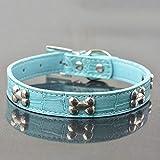 XIAOLANGTIAN 4 Größen 4 Farben Krokodil Stil Knochen Besetzt Klein Mittel Hund Halskette Kragen Hundehalsband, Blau, L