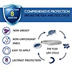 flea and tick collar for dogs, waterproof dog anti flea collar, natural & safe Flea and Tick Collar for Dogs, Waterproof Dog Anti Flea Collar, Natural & Safe 51SynDKBp0L