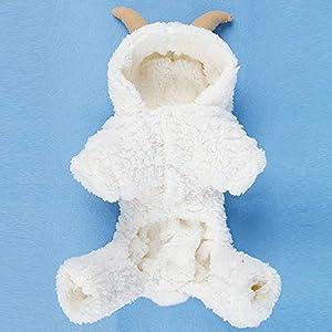 Mimagogo Mouton de Velours Corail Conception Vãªtements pour Chiens pour Chiens Animaux domestiques Vãªtements pour Chien à Capuchon