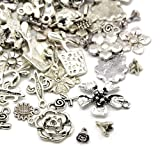 30 Grams Argento Antico Tibetano MiscelaCasuale Ciondoli (Fiore) - (HA07045) - Charming Beads