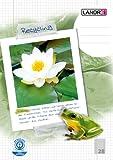 LANDRE 100050218 Schulheft Recycling 10er Pack A4 16 Blatt Lineatur 28 - kariert mit Doppelrand Umweltzeichen Der Blaue Engel