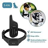 PetTec Erziehungshalsband mit Fernbedienung    16 Vibrationsstufen + Tonsignal    600m Reichweite, wiederaufladbarer Akku, für kleine und große Hunde, wasserdicht IPX7 (Remote Vibra Advance 2.0)