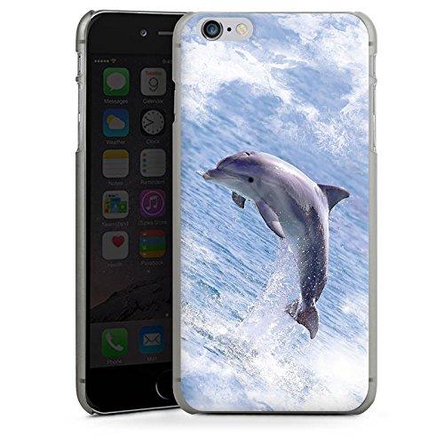 Apple iPhone X Silikon Hülle Case Schutzhülle Springender Delphin Delfin Wal Hard Case anthrazit-klar