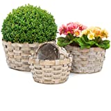 suchergebnis auf f r weidenkorb zum bepflanzen. Black Bedroom Furniture Sets. Home Design Ideas