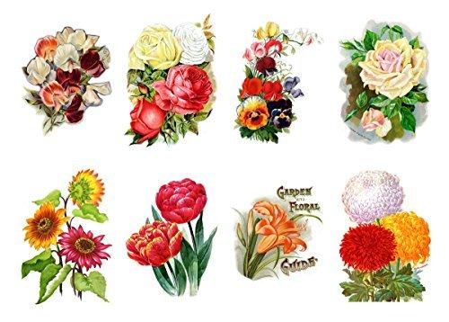 Grosse Aufkleber (jeder 65x90mm, pack 8 Stuck) Blumen Zeichnungen FLONZ VINTAGE STICKERS Bilder -