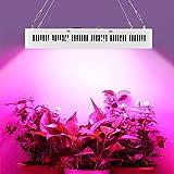 300W LED Pflanzenlampe für Gewächshaus Pflanze Bluete im Weiß mit IR UV Licht für Zimmerpflanzen