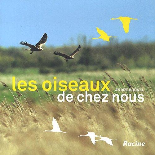 Les oiseaux de chez nous: Alouettes, bouvreuils, martinets, moineaux, geais, cigognes, faucons pèlerins.