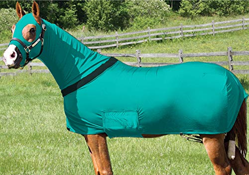 Q&A Supply Lycra Full Body Rug with Full Separating Zip/Stretch Full body Rug in X-LARGE/TEAL