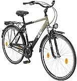 LEADER Citybike Herren Toury, 28 Zoll, 3 Gang, Rücktrittbremse 71,12 cm (28 Zoll)
