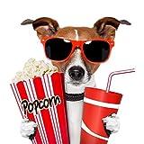 6 Kino-Einladungen INKL. Umschlägen