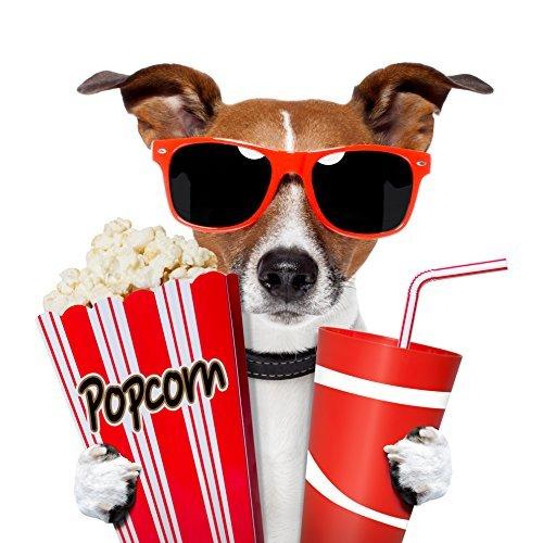 """6 Kino-Einladungen INKL. Umschlägen \""""CHICO - DER KINOGÄNGER\"""": lustiges Einladungskarten-Set für Kindergeburtstag im Kino / 6 Kinder Geburtstagseinladungen für Jungen und Mädchen inkl. 6 Umschlägen von EDITION COLIBRI © - umweltfreundlich, da klimaneutral gedruckt"""