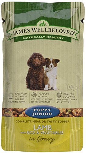 James Wellbeloved Complete Wet Puppy Food Lamb Rice and Vegetables, 10 x 150 g