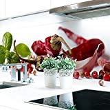 Küchenrückwand Gewürz Mix Premium Hart-PVC 0,4 mm selbstklebend 220x60cm
