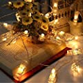 Nasharia LED Foto Clips Lichterketten-8 Modi 20 Clips 2M Fernbedienung Batterie Betrieben Stimmungsbeleuchtung für Schlafzimmer Hängende Bilder Kunstwerke Memos Fenster Zimmer (Warm-weiß) von Nasharia bei Lampenhans.de