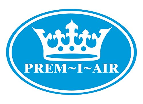 51T%2BdquDpgL - Prem-I-Air 9000 BTU DC Inverter Window Air Conditioner with Remote Control & Timer,
