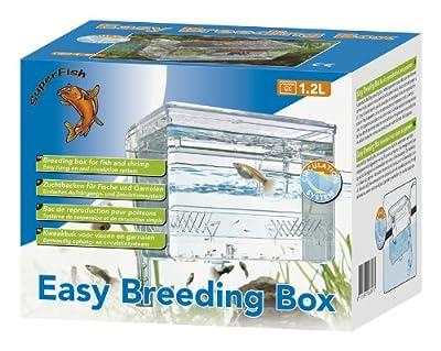 SF Easy Breeding Box (kleines Zuchtbecken)