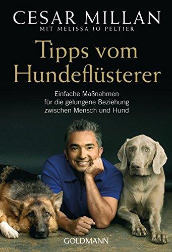 tipps-vom-hundeflusterer-einfache-massnahmen-fur-die-gelungene-beziehung-zwischen-mensch-und-hund