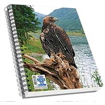 Skag AR Reality App. Eagle A6 Notebook