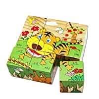 Six Sided Wooden Puzzle for children, Six Kinds of Animals
