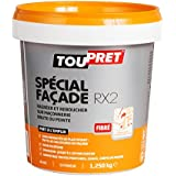Toupret 251080 - Masilla de reparación para exteriores (especial fachadas, 1,25 kg)