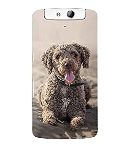 FUSON Toy Poodle Sitting Dog 3D Hard Polycarbonate Designer Back Case Cover for Oppo N1