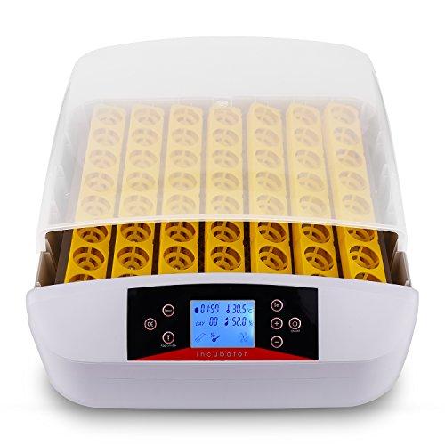 Sailnovo incubatrice automatica di uova, incubatore intelligente digitale con schermo a led di temperatura e sensore di temperatura preciso (56)
