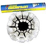 AeeKing Produits de Badminton faciles à Utiliser 12pcs de Formation Blanc Plume Sarcelle Volants de Badminton appropriés pour Les Sports de Plein air durables et créatifs