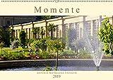 Momente der Vergänglichkeit (Wandkalender 2019 DIN A2 quer): Eine Sammlung kurzer Momentaufnahmen, wie sie der Jahreslauf praesentiert. Kurze ... (Monatskalender, 14 Seiten ) (CALVENDO Natur)