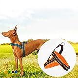 bureze verhindert Zerren Pet Hundegeschirr Reflektierende Pet Weste