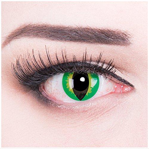 Dragon Kontaktlinsen mit Pflegemittel mit Behälter ohne Stärke, 1er Pack (1 x 2 Stück) (Haloween Kontaktlinsen)