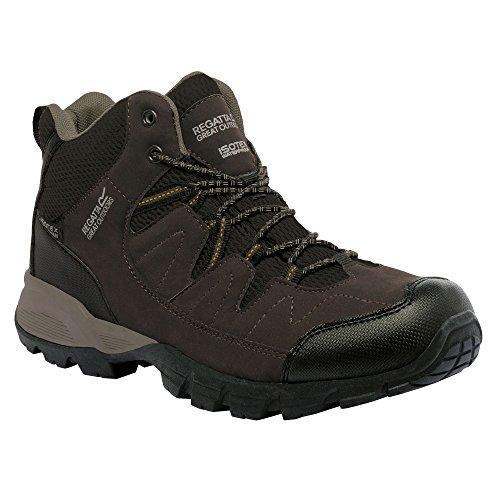 Regatta Holcombe Mid, Chaussures de Randonnée Hautes Homme Marron