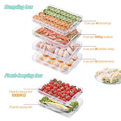 DXXMD 1 Stück Küche Frischhaltedose Ei Fisch Meeresfrüchte Obst Knödel Aufbewahrungsbox Mikrowelle Kühlschrank Frischhaltedose Halterung (Mikrowelle Knödel)