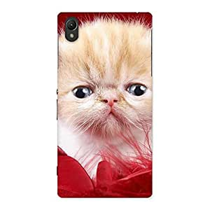 Kitty In Red Fur Back Case Cover for Sony Xperia Z1