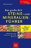 Der große BLV Steine- und Mineralienführer: Mineralien, Erze, Edelsteine, Gesteine, Meteorite - Walter Schumann