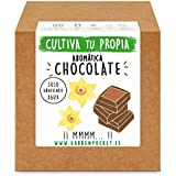Garden Pocket - Kit Cultivo AROMÁTICA Chocolate