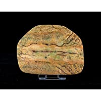 Bild Jasper–Slice poliert groß mit Ständer–slice001 preisvergleich bei billige-tabletten.eu