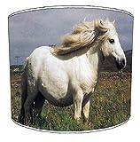 30,5cm Tabelle falabella pony print Lampenschirme 2