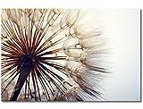 WandbilderXXL Gedrucktes Leinwandbild Big Dandelion 60x40cm - in 6 verschiedenen Größen. Fertig gespannt auf Holzkeilrahmen. Günstige Leinwanddrucke für Kinderzimmer Schlafzimmer.