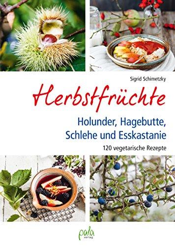 Herbstfrüchte - Holunder, Hagebutte, Schlehe und Esskastanie