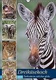 Dreikäsehoch - Tierkinder im südlichen Afrika (Wandkalender 2019 DIN A3 hoch): Nachwuchs in den Nationalparks (Monatskalender, 14 Seiten ) (CALVENDO Orte)