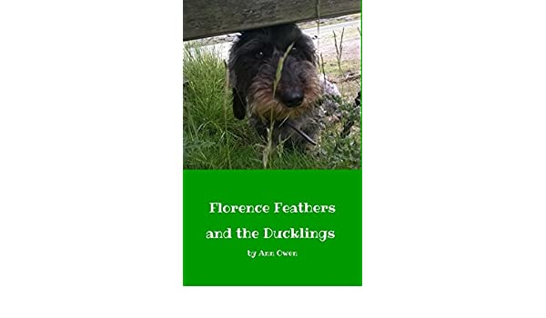 Florence feathers and the ducklings ebook ann owen k owen florence feathers and the ducklings ebook ann owen k owen amazon kindle store fandeluxe Ebook collections