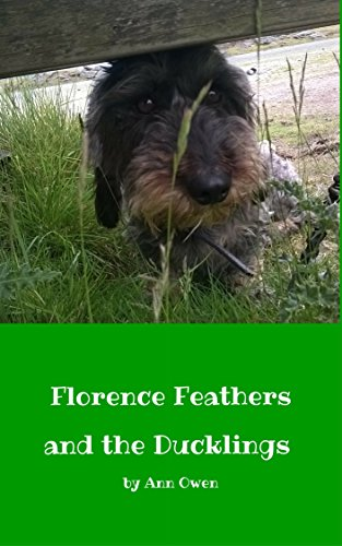 Florence feathers and the ducklings ebook ann owen k owen florence feathers and the ducklings by owen ann fandeluxe Ebook collections