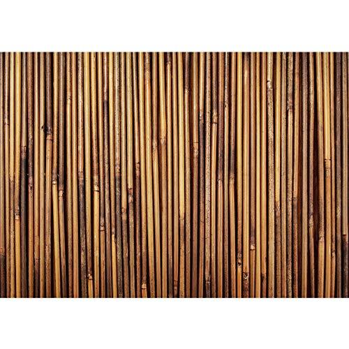 Vlies Fototapete 350x245 cm - Top ! PREMIUM PLUS Foto Tapete ! Wandbilder XXL Wandbild Bild Fototapeten Tapeten Wandtapete Wanddeko Wand Bambus Wald Dschungel - no. 173
