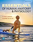 #10: Essentials of Human Anatomy & Physiology