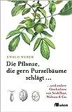 Die Pflanze, die gern Purzelbäume schlägt ?: ?und andere Geschichten von Seidelbast, Walnuss & Co. - Ewald Weber